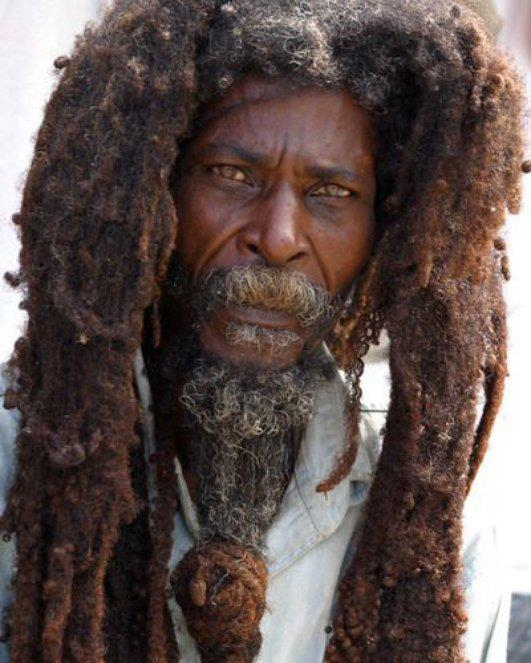 Dreadlocks Rastafari Tozion Org